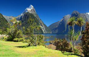 Neuseeland - Detektei Argusdetect, deutsche Detektive in Neuseeland * im Einsatz