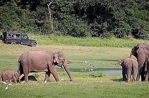 Sri Lanka - Detektei Argusdetect, als Detektiv Sri Lanka sind wir Ihr Partner