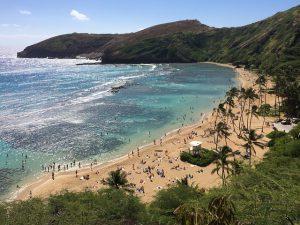 Hawaii - Detektei Argusdetect, deutsche Detektive in Hawaii * im operativen Einsatz