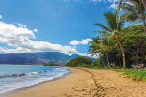 """Hawaii - Detektei Argusdetect, erfahrene und qualifizierte Detektive für Hawaii in den USA - vereinigten Staaten von Amerika oder """"united states of america"""" - wir übernehmen!"""